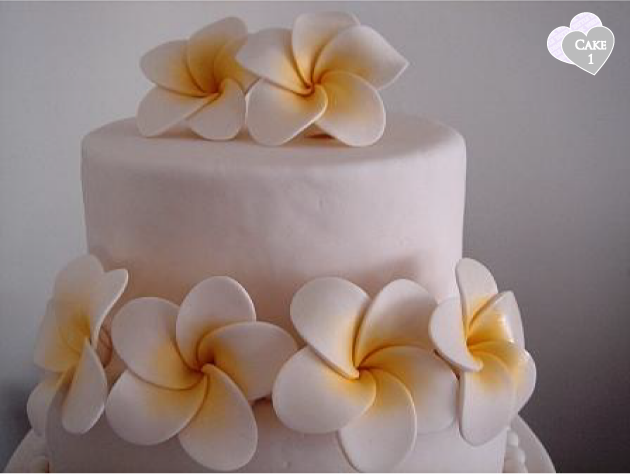 wedding cake flowers how to make flowers the of frangipanis the peak xperience 22677